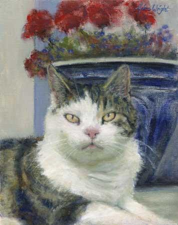 Ali, The Pittenweem Cat, Oil