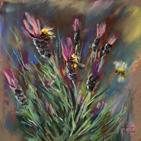 Bees On Lavender, Pastel