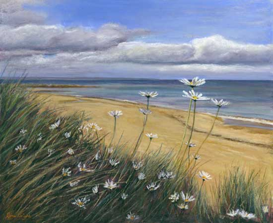 Daisies on Kingsbarns Beach, Acrylic and Pastel on Panel