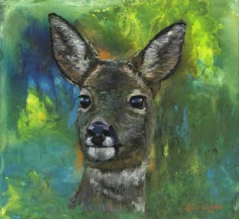 Roe dear with abstract forest background