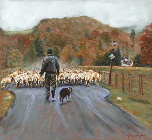 One Man And His Dog, Pastel