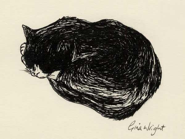 Sleeping Cat Two, Ink Sketch
